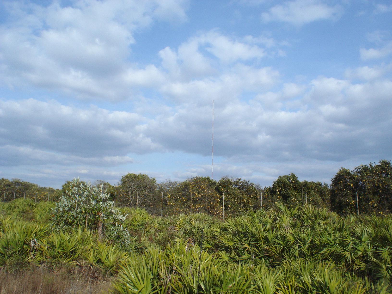 Suburban Estates Holopaw FL Land for sale Florida