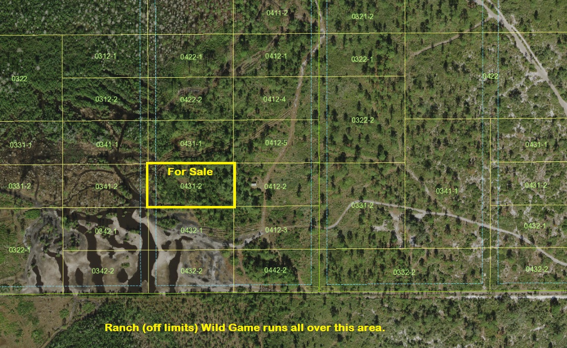 Suburban Estates Holopaw Florida 4x4 hunt atv