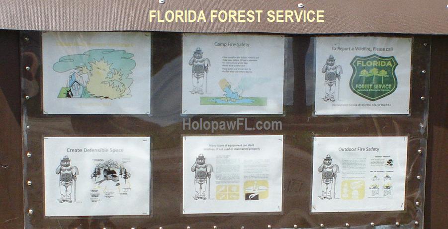 Suburban Estates Holopaw Florida Forest Service