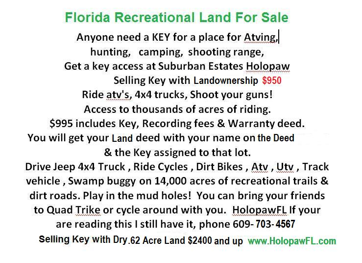 Holopaw Suburban Estates Land For Sale Florida Recreational Land