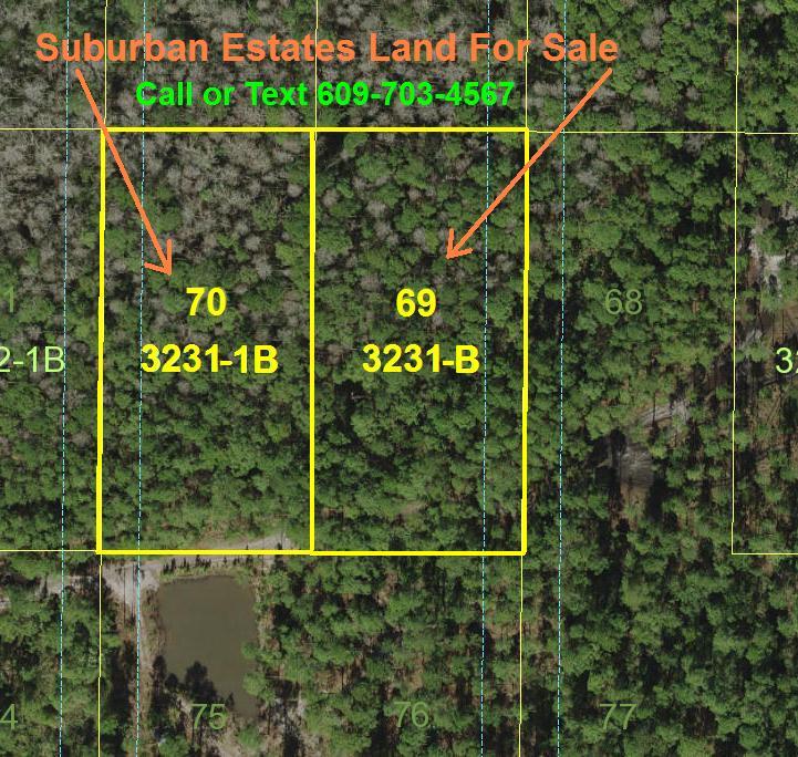 Florida Recreational Land For Sale Suburban Estates Holopaw FL