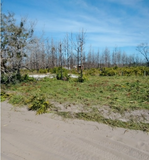 Suburban Estates Holopaw Osceola County Florida Recreational Land Lot atv 4x4 hunt camp